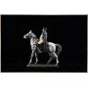 Napoleon on Horseback