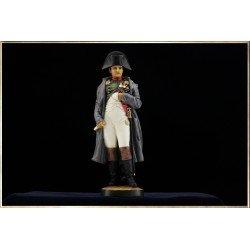 Napoleon on Foot