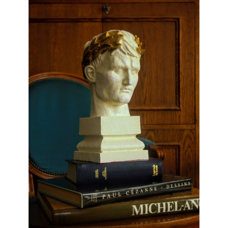 Napoleon Bust crowned